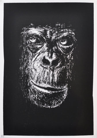 SINGLE CHIMP (BLACK) by BD NETWORK