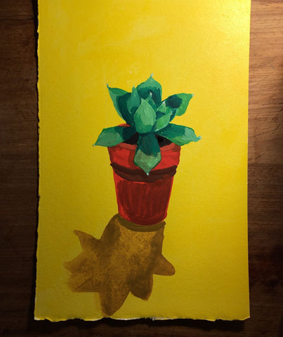 YELLOW SUCCULENT