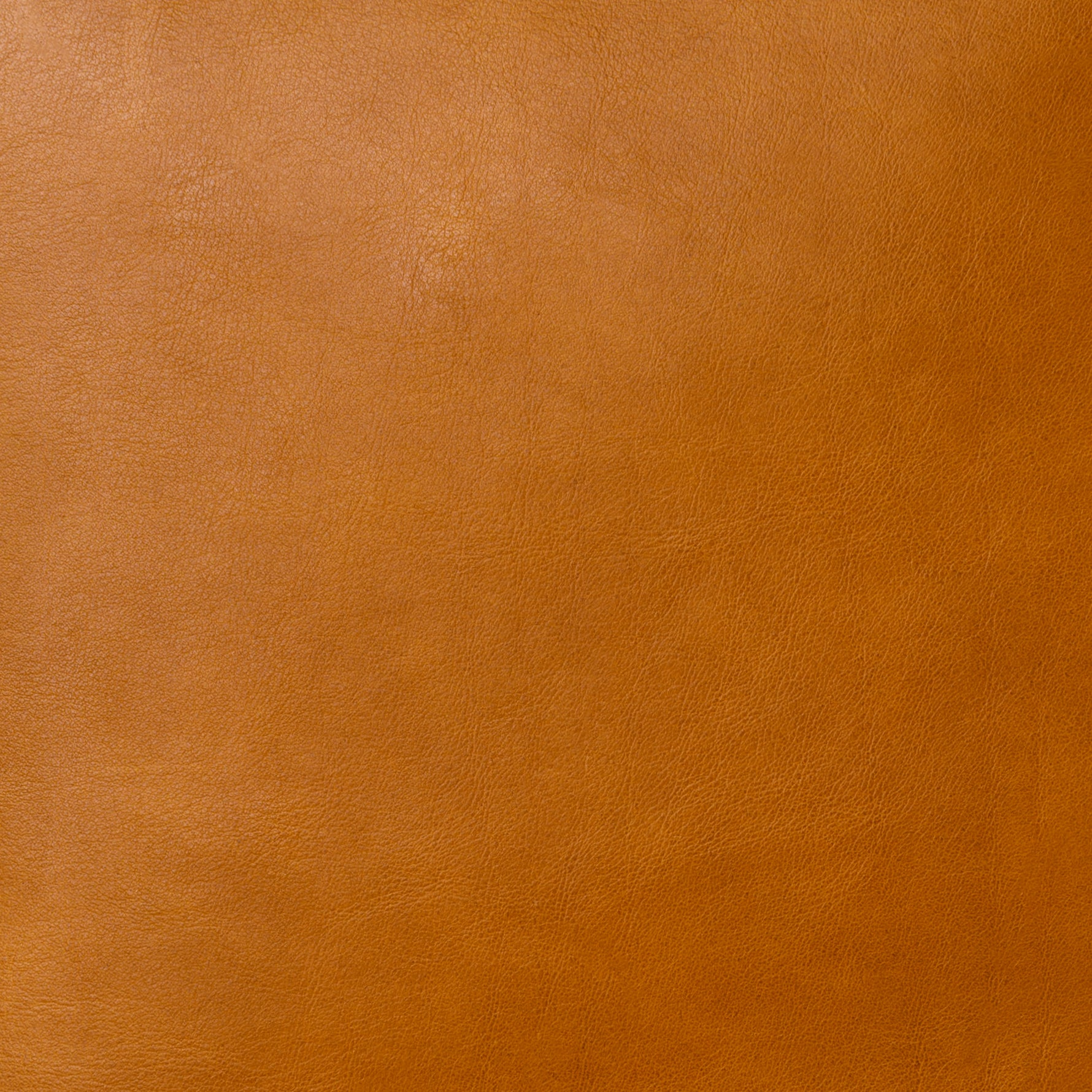 LEATHER SWATCH KIT