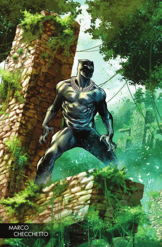 "Black Panther (2016 Series) #170 (Variant ""Young Guns"" Cover - Marco Checchetto)"