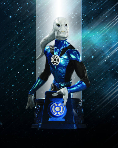 Heroes of the DC Universe (Blackest Night) – Blue Lantern Saint Walker Bust