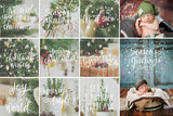 Holiday Photo Overlays | Calligraphy Doodles