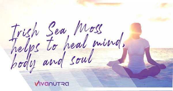 Irish Sea Moss Helps to Heal Mind, Body and Soul - Viva Nutra