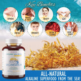 REGENERATION Organic Irish Sea Moss Capsules