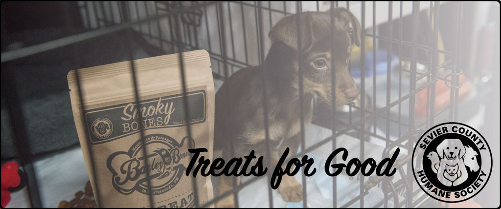 Treats for Good - SCHS