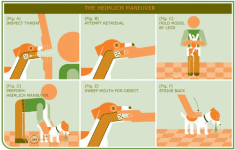 Heimlich for Dogs