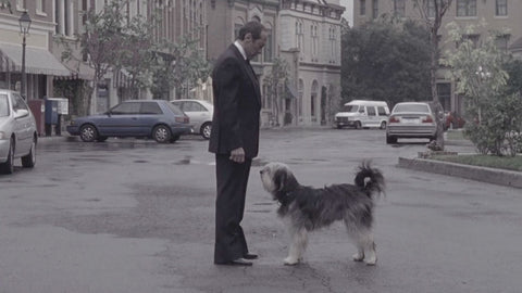 Paul Anka the Dog and Man