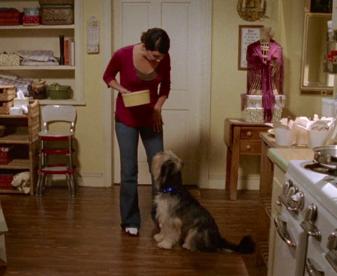Paul Anka the Dog, Gilmore Girls