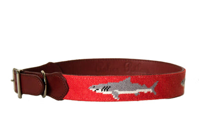 Shark needlepoint dog collar by Asher Riley