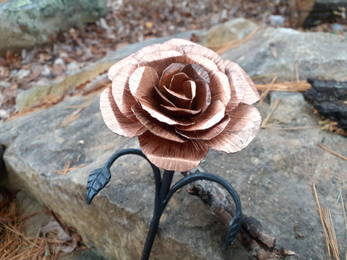 Copper and Steel Rose