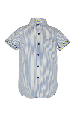 Beardsley: Blue stripe shirt