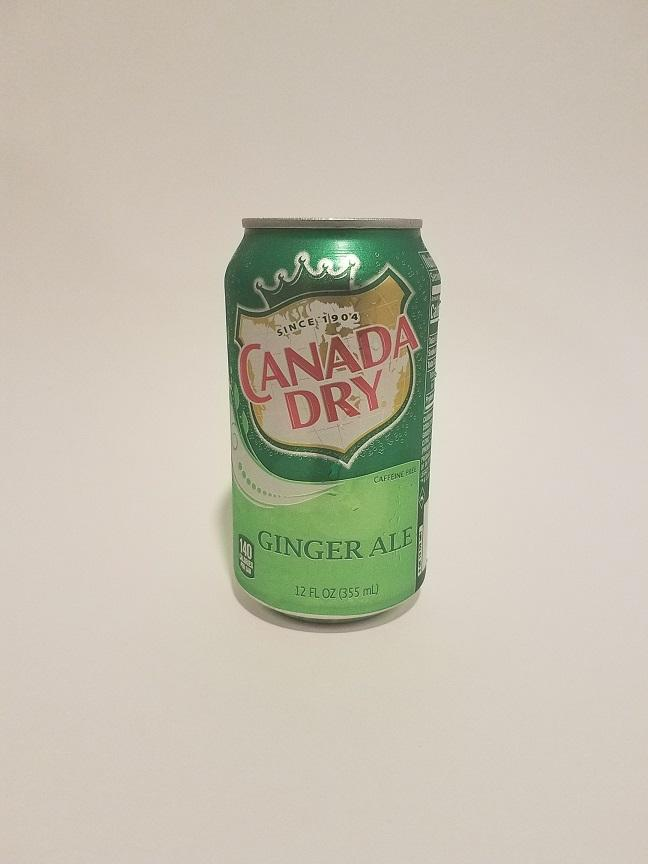 Ginger Ale Can 350ml