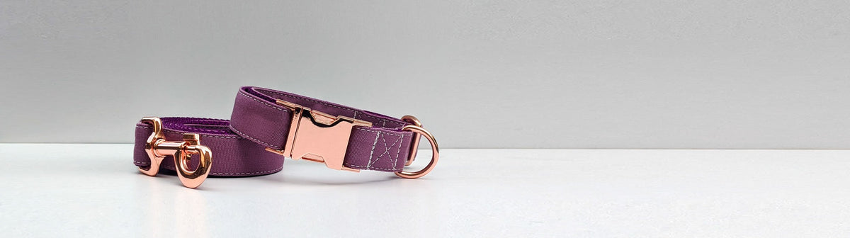 Dog Collar and Leash Sets