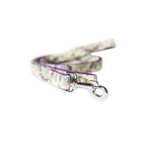 Purple Mulberry Leash Silver Collection