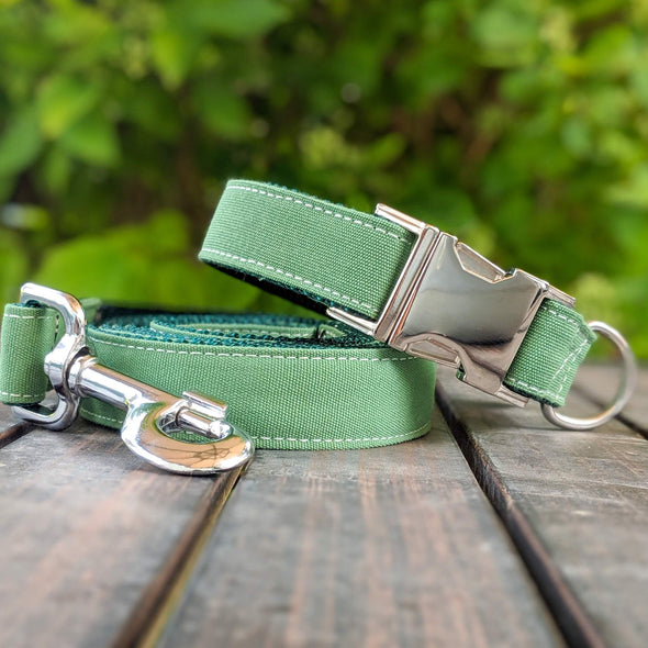 Evergreen Dog Collar Silver Collection