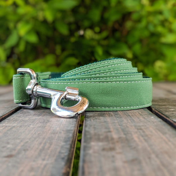 Evergreen Dog Collar and Leash Set Silver Collection