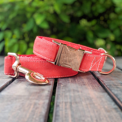 Fuego Red Dog Collar and Leash Set Rose Gold Collection