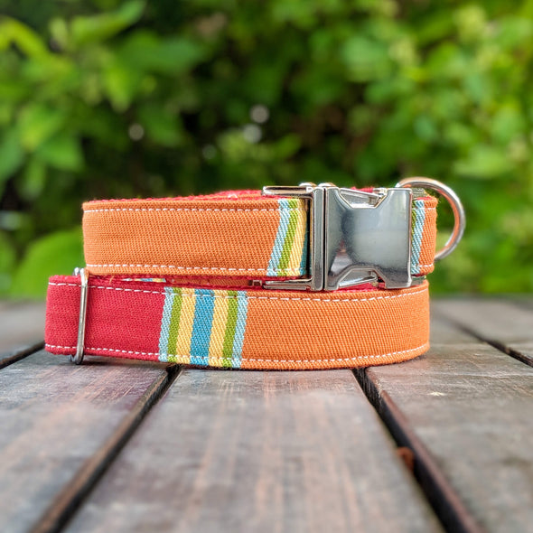 Strawberry and Orange Dog Collar and Leash Set Silver Collection