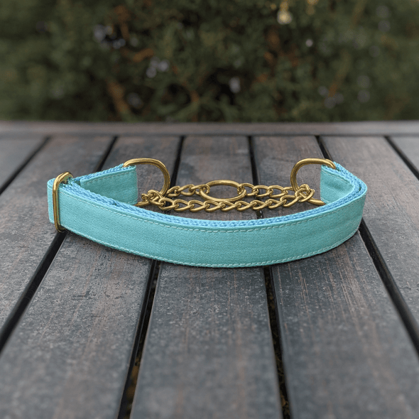 Aqua Getaway Martingale Dog Collar Gold Collection