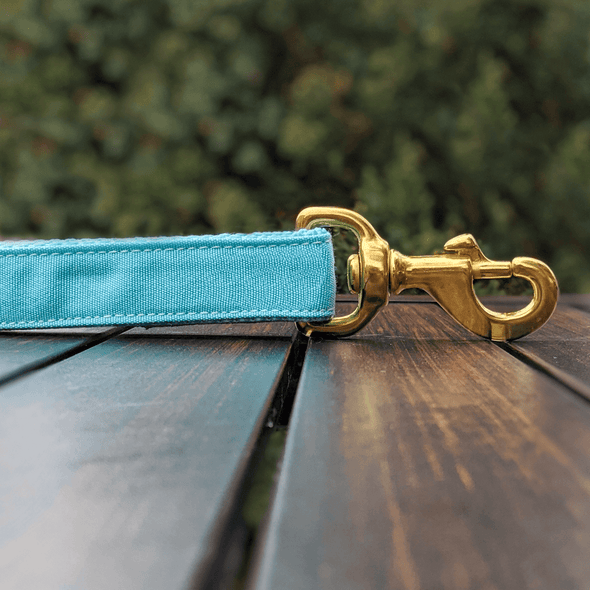 Aqua Getaway Dog Leash Gold Collection