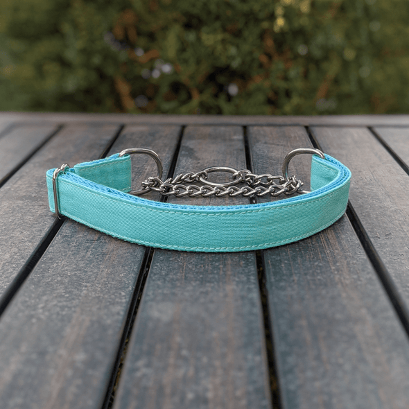 Aqua Getaway Martingale Dog Collar Silver Collection