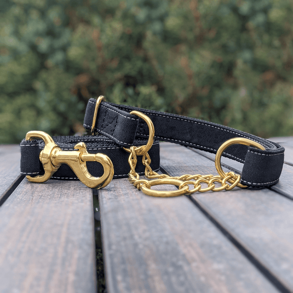 Onyx Martingale Dog Collar Gold Collection