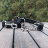 Onyx Martingale Dog Collar Silver Collection