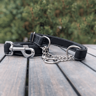 Onyx Martingale Dog Collar and Leash Set Silver Collection