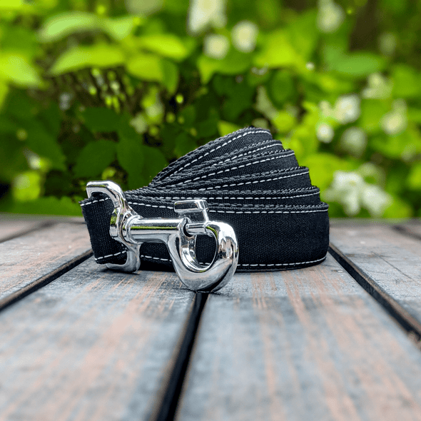 Onyx Dog Collar and Leash Set Silver Collection