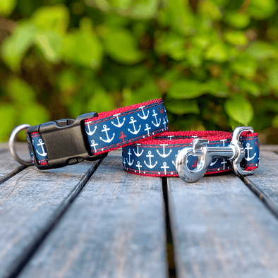 Good Buoy Dog Collar and Leash Set