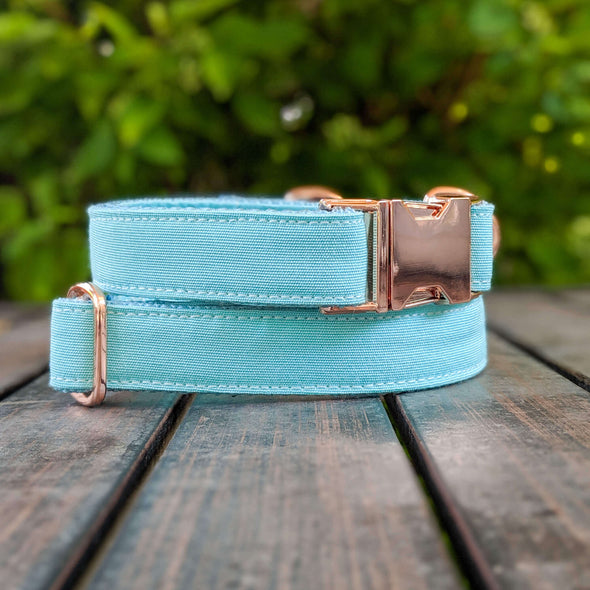 Aqua Getaway Dog Collar and Leash Set Rose Gold Collection