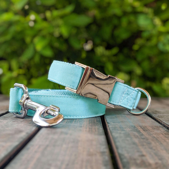 Aqua Getaway Dog Collar and Leash Set Silver Collection
