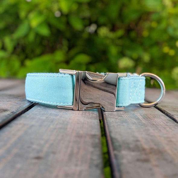 Aqua Getaway Dog Collar Silver Collection