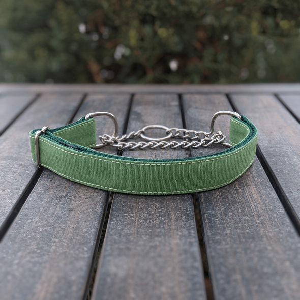 Evergreen Martingale Dog Collar and Leash Set Silver Collection