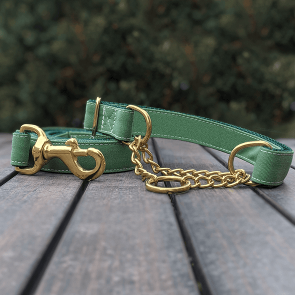 Evergreen Martingale Dog Collar and Leash Set Gold Collection