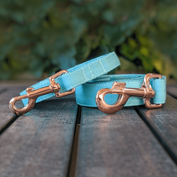 Aqua Getaway Dog Leash Rose Gold Collection