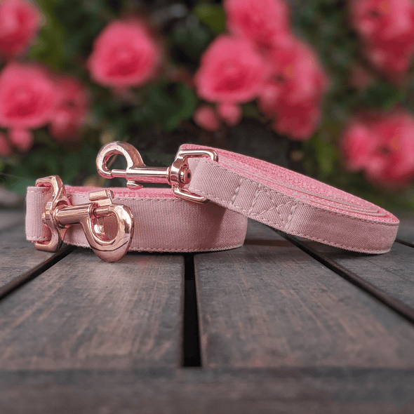 Pink Champagne Dog Collar and Leash Set Rose Gold Collection