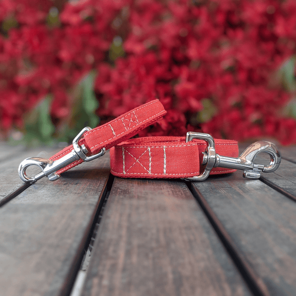 Fuego Red Dog Leash Silver Collection