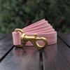 Pink Champagne Dog Leash Gold Collection