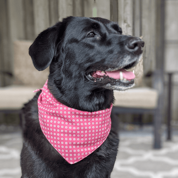 Pink Polka Dot Dog Bandana