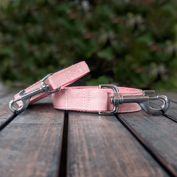 Pink Champagne Dog Leash Silver Gold Collection