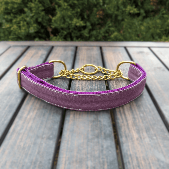 Amethyst Martingale Dog Collar Gold Collection