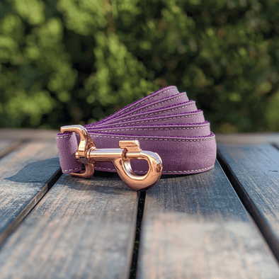 Amethyst Dog Leash Rose Gold Collection