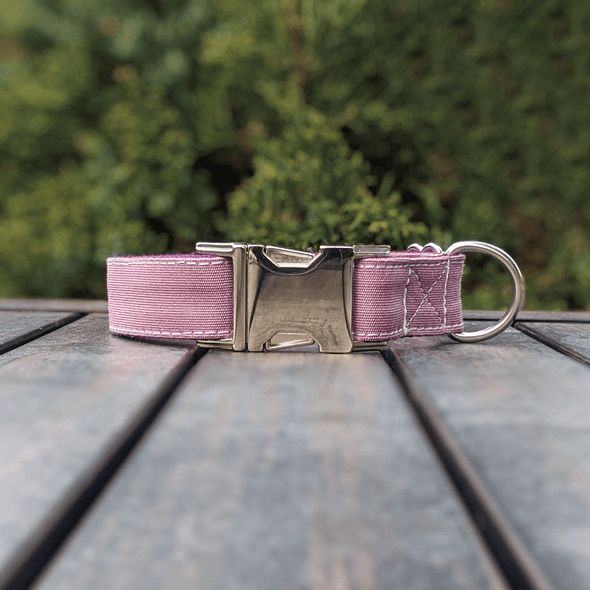 Amethyst Dog Collar and Leash Set Silver Collection