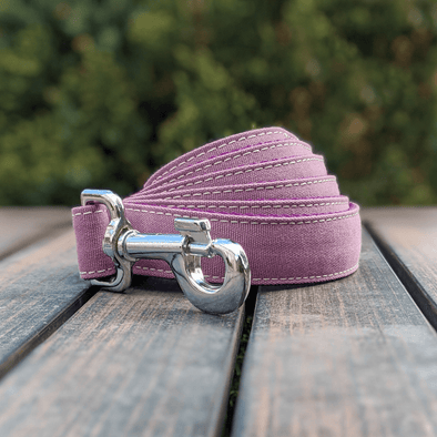 Amethyst Dog Leash Silver Collection