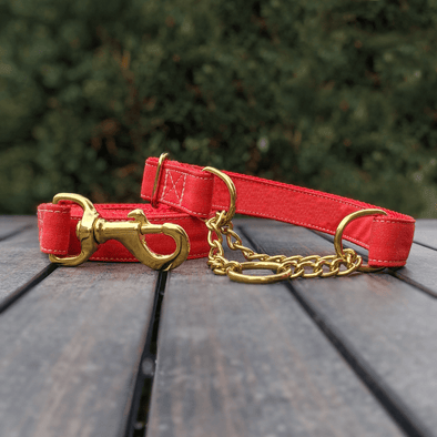 Fuego Red Martingale Dog Collar and Leash Set Gold Collection