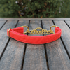 Fuego Red Martingale Dog Collar Gold Collection