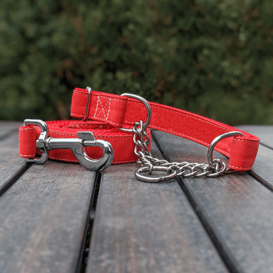 Fuego Red Martingale Dog Collar and Leash Set Silver Collection