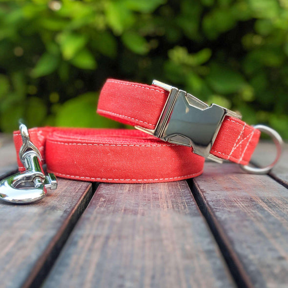Fuego Red Dog Collar Silver Collection