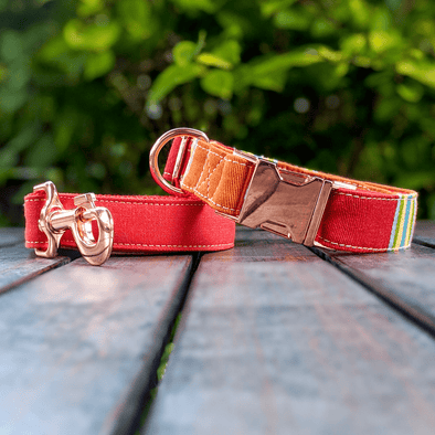 Strawberry and Orange Dog Collar and Leash Set Rose Gold Collection